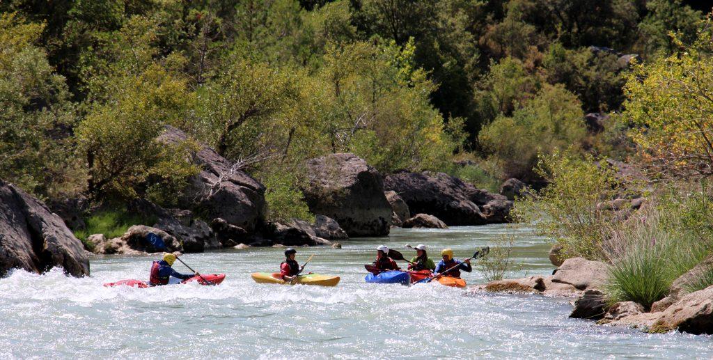 cursos de kayak todo el año
